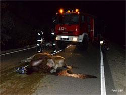 Accidente en Valdefuentes de Sangusín