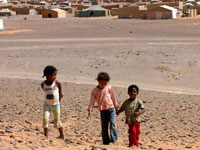 Campamentos Sahara