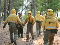 Cuadrillas forestales de Tracsa en el incendio de Los Pinos, Béjar