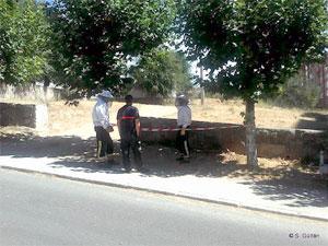 Bomberos de Béjar durante las tareas de eliminación del avispero