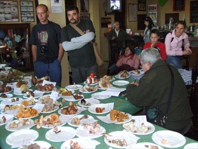 Jornadas micológicas 2008