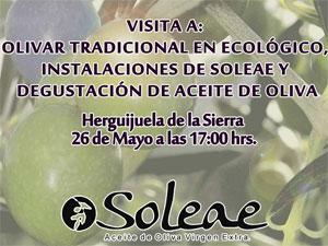 Cartel Visita a Soleae. Primavera en las Sierras