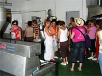 Jornada de puertas abiertas en Castañas y Derivados E Cerro