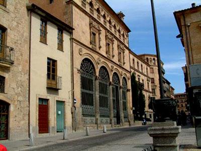 Palacio de La Salina, Salamanca