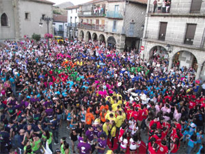 Peñas en la plaza Mayor 2011