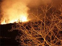 Fuego en la Sierra de Béjar