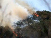 Incendio en el paraje de Navamuño