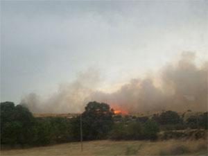 Incendio en Puente del Congosto, Salamanca