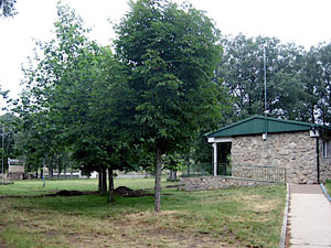 La Legoriza, Campamento juvenil San Martin del Castañar