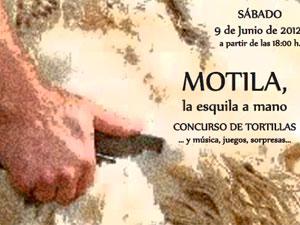 Cartel Motila, Los Santos