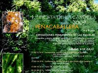 Fiesta de la Candela, Peñacaballera