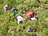 Efectivos del Grupo de Rescate en la Sierra de Béjar