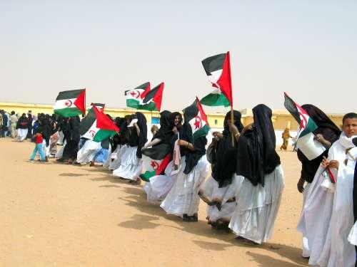 Sahra Occidental. Foto: Ecured