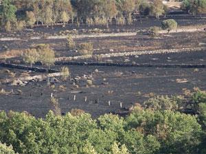 Superficie quemada incendio Valdehijaderos. Agosto 2012