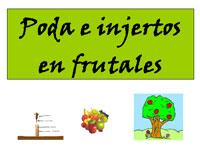 Charla sobre Poda e injertos en frutales, Valdesangil