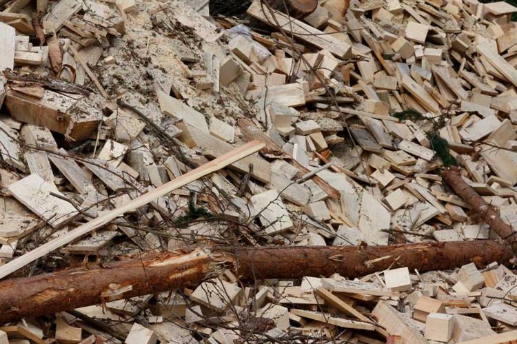Madera para biomasa