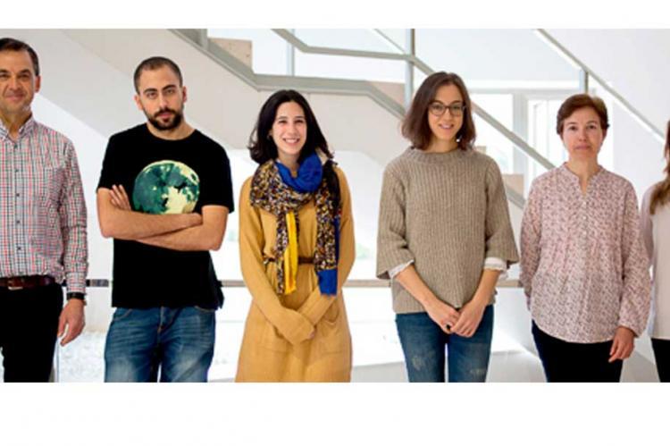 Grupo de investigación del Centro de Investigación del Cáncer CIC-IBMCC