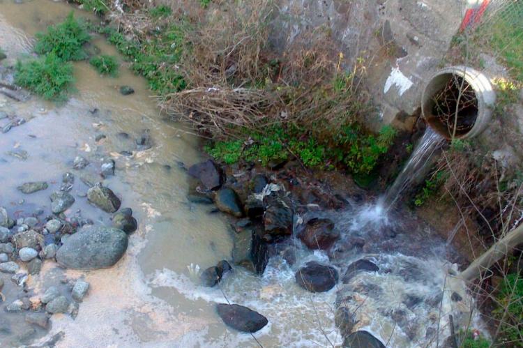 Vertido en el río Cuerpo de Hombre a su paso por La Aliseda