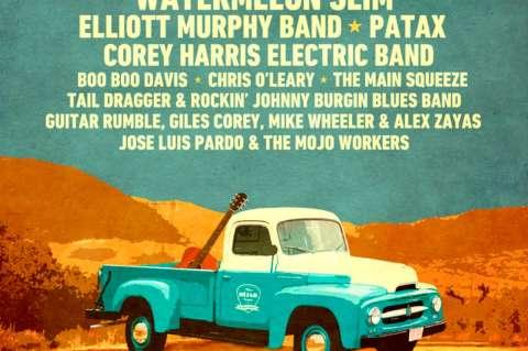 Vista Parcial del Cartel del XX Festival de Blues
