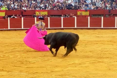 Instante de la corrida de toros celebrada en Béjar
