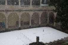 Bejar nevada