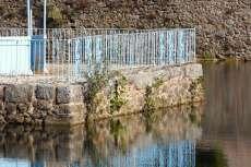 Muro del templete del estanque con maleza y arbustos creciendo en su interior