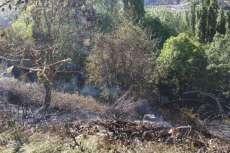 Fuego extinguido en el entorno de la fuente del Lobo