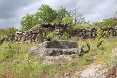 Ejemplar de lagar rupestre en el término de San Esteban de la Sierra