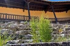 asientos de piedra con rastrojos creciendo