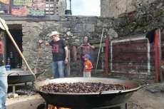 Cocinando los mejillones