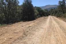 Camino privado situado por encima de Monte Mario. (Foto: PDBB)